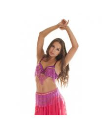 Professional Sequined Bra & Belt Belly Dance Costume
