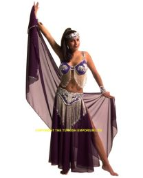 Belly Dance Costume #10