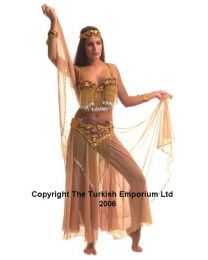 Turkish Belly Dance Costume #12