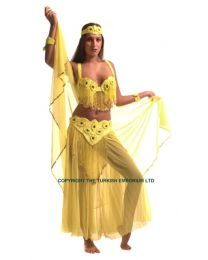 Belly Dance Costume #12 B