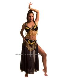 Belly Dance Costume #2
