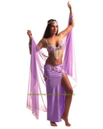 Professional Belly Dance Costume #34