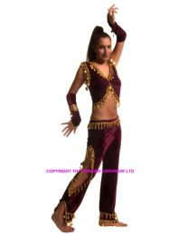 Belly Dance Costume #6