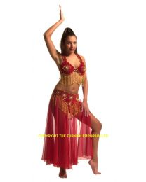 Belly Dance Costume #8