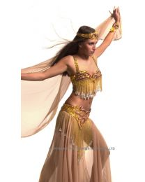 Belly Dance For Beginners DVD  CD