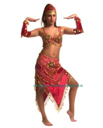 Egyptian Belly Dance Costume #3