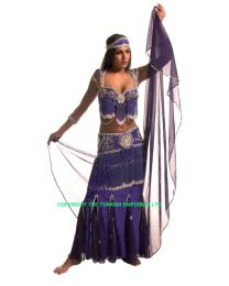 Glamour Belly Dance Costume