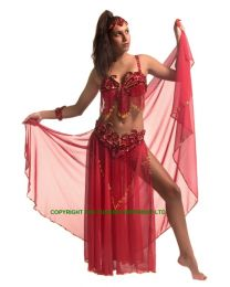 Kaplan Belly Dancer Costume