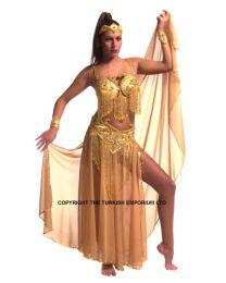 Sparkle Belly dancing Outfit