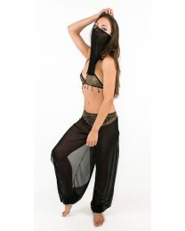 Sexy Harem Girl Belly Dance Costume Arabian Nights Cosplay Outfit Bra Pants Veil